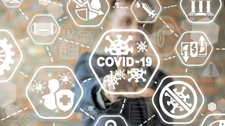 COVID-19 zachęcił internautów do powrotu do wcześniejszych wartości i działań