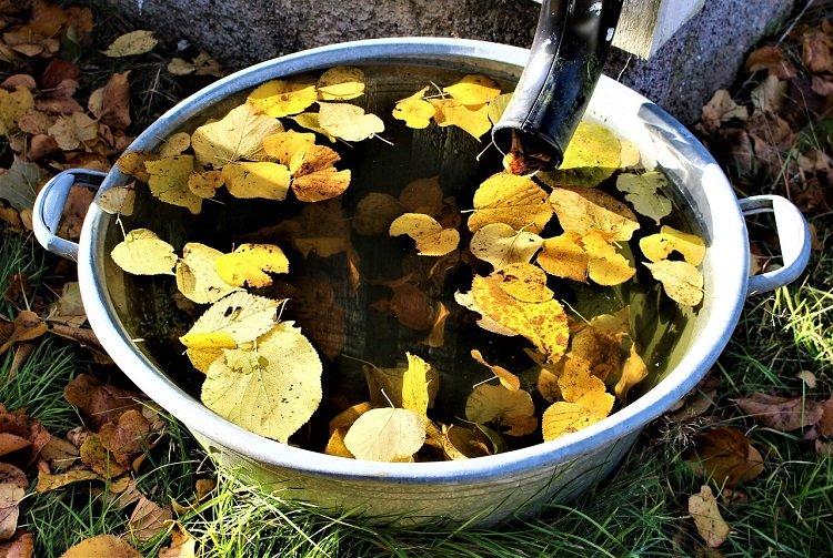Moja Woda 2.0 – weź 5000 zł i oszczędzaj wodę